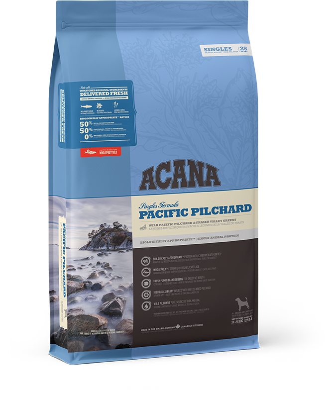Pacific Pilchard